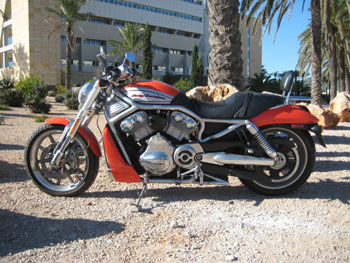 Harley Davidson Street Rod posing in front of Grand Hotel Ibiza