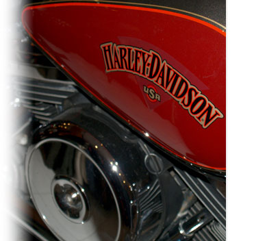 Harley Davidson on tank of Rental Heritage Softail